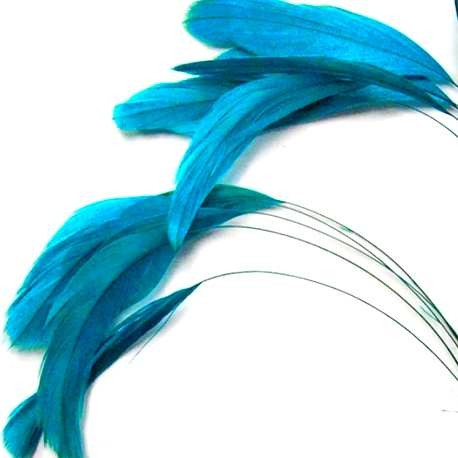 Plumes Coquetips Turquoise